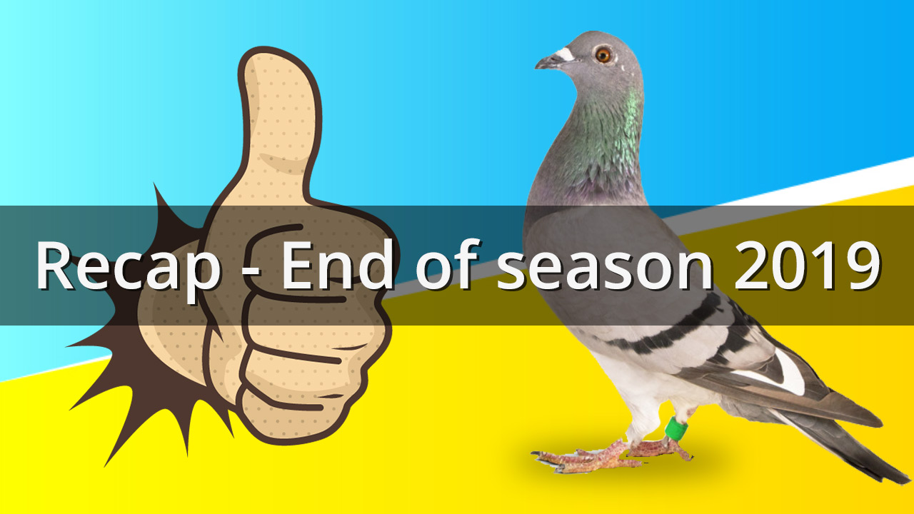 Recap end of season 2019 thumbnail - De Belser Johan Racing Pigeons Belgium