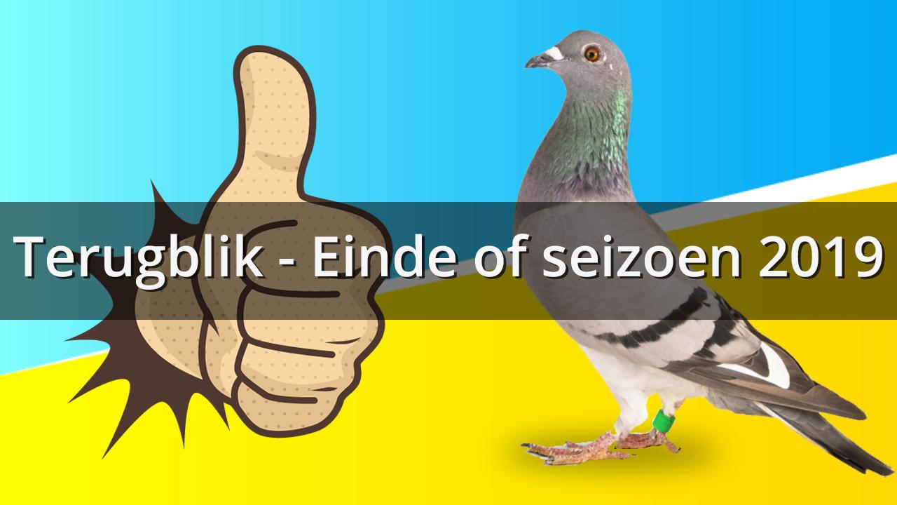 Terugblik einde seizeon 2019 thumbnail - De Belser Johan Racing Pigeons Belgium