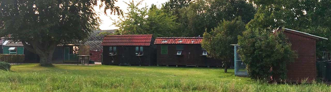 Lofts-De-Belser-Johan-web